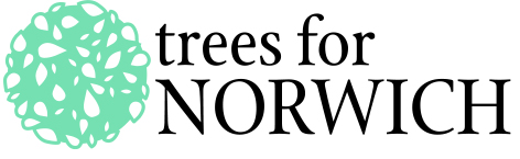 Trees for norwich